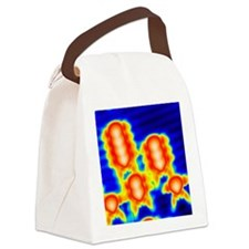 Spintronics research, STM - Canvas Lunch Bag