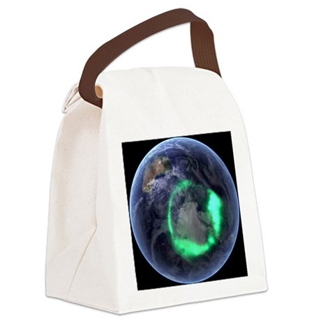 te image - Canvas Lunch Bag