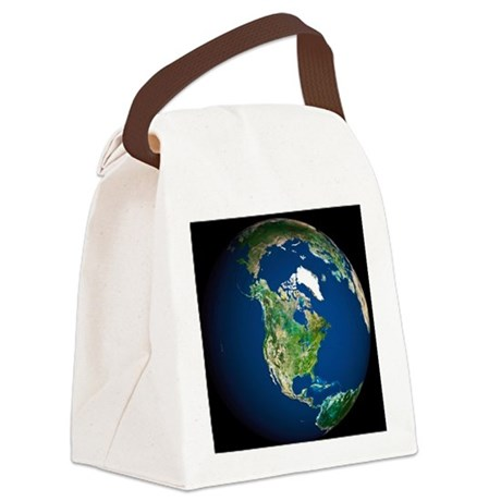 Earth - Canvas Lunch Bag