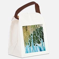 Ganges River delta, India - Canvas Lunch Bag