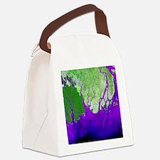 Ganges Delta - Canvas Lunch Bag