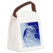 Weddell sea, Antarctica - Canvas Lunch Bag