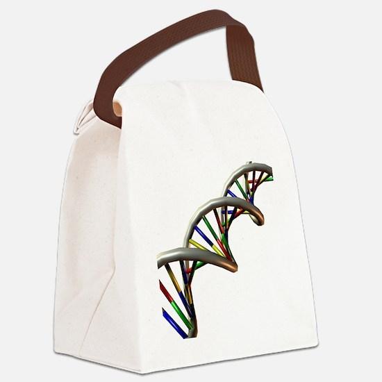 DNA molecule - Canvas Lunch Bag