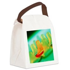 Collection of male condoms - Canvas Lunch Bag