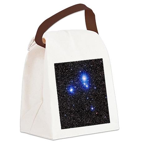 er IC 2391 in Vela - Canvas Lunch Bag