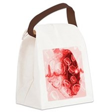 Heart and ECG - Canvas Lunch Bag