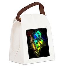 Insulin molecule - Canvas Lunch Bag