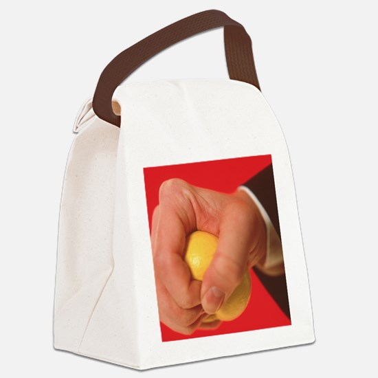Stress - Canvas Lunch Bag