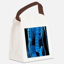 Lower spine, artwork - Canvas Lunch Bag