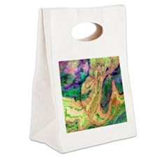 Anti-Atlas mountains - Canvas Lunch Tote