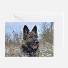 Belgian terv rainbow bridge Greeting Card