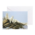 Arctic Foxes Christmas Cards (Pkg.of 6)