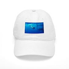 Whaleshark Magic Baseball Cap