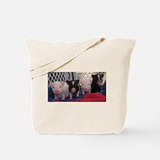 Baby piggies Tote Bag