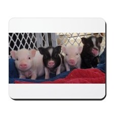 Baby piggies Mousepad