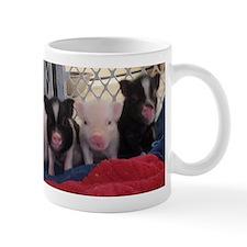 Baby piggies Mug