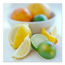 Citrus fruits - Square Car Magnet 3