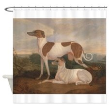 the greyhounds Shower Curtain