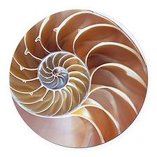 Nautilus shell - Round Car Magnet