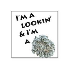 Lichen and Lookin' Sticker