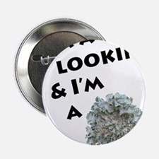 """Lichen and Lookin' 2.25"""" Button"""