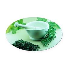 Herbs - Oval Car Magnet