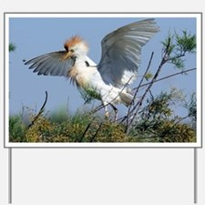 Cattle egret in breeding plumage - Yard Sign