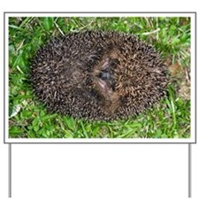 European hedgehog - Yard Sign