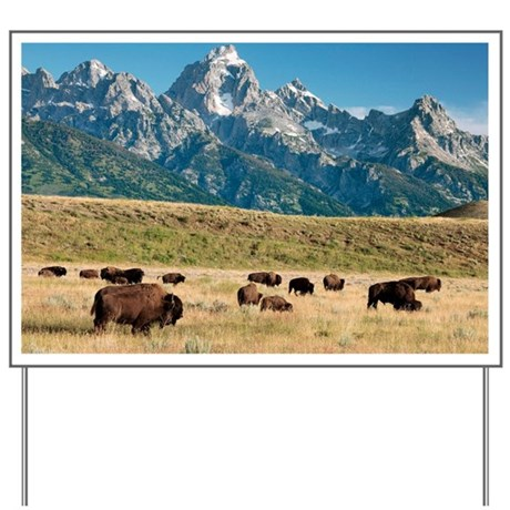 Herd of American Bison - Yard Sign
