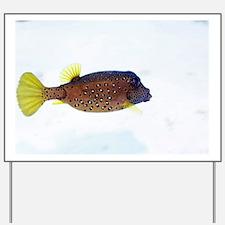 Yellow boxfish - Yard Sign