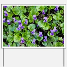 Viola odorata (Sweet Violets) - Yard Sign