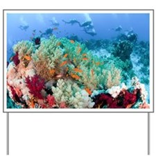 Coral Reef Red Sea, Ras Mohammed - Yard Sign