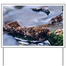 Leaves in a stream - Yard Sign