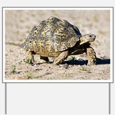 Leopard tortoise - Yard Sign