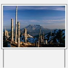 Mount St Helens volcano - Yard Sign