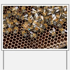 Queen bee with worker bees - Yard Sign