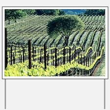 Vineyard - Yard Sign
