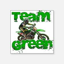 Team Green 2013 Sticker