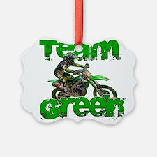 Team Green 2013 Ornament