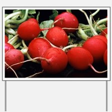Radishes - Yard Sign