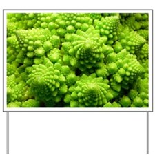 Romanesco cauliflower head - Yard Sign