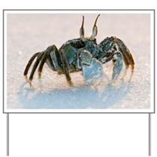 Ghost crab on sand - Yard Sign