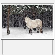 Highland pony - Yard Sign