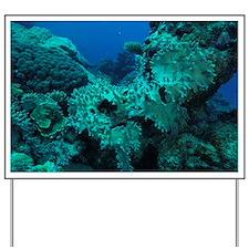 Coral reef - Yard Sign