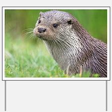 European otter - Yard Sign