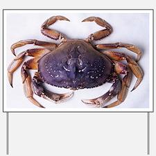 Dungeness crab - Yard Sign