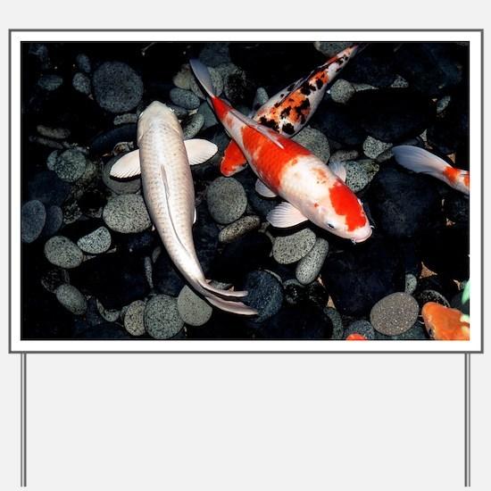 Koi carp in a pond - Yard Sign