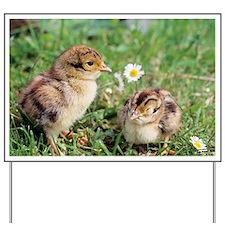 Pheasant chicks - Yard Sign