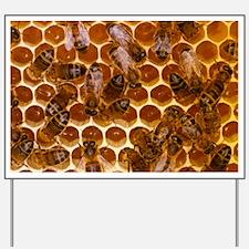 Worker honeybees - Yard Sign