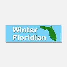 Winter Floridian Car Magnet 10 x 3
